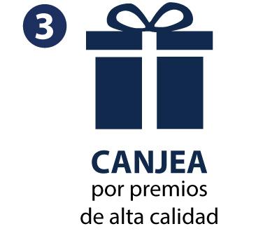 CANJEA 2