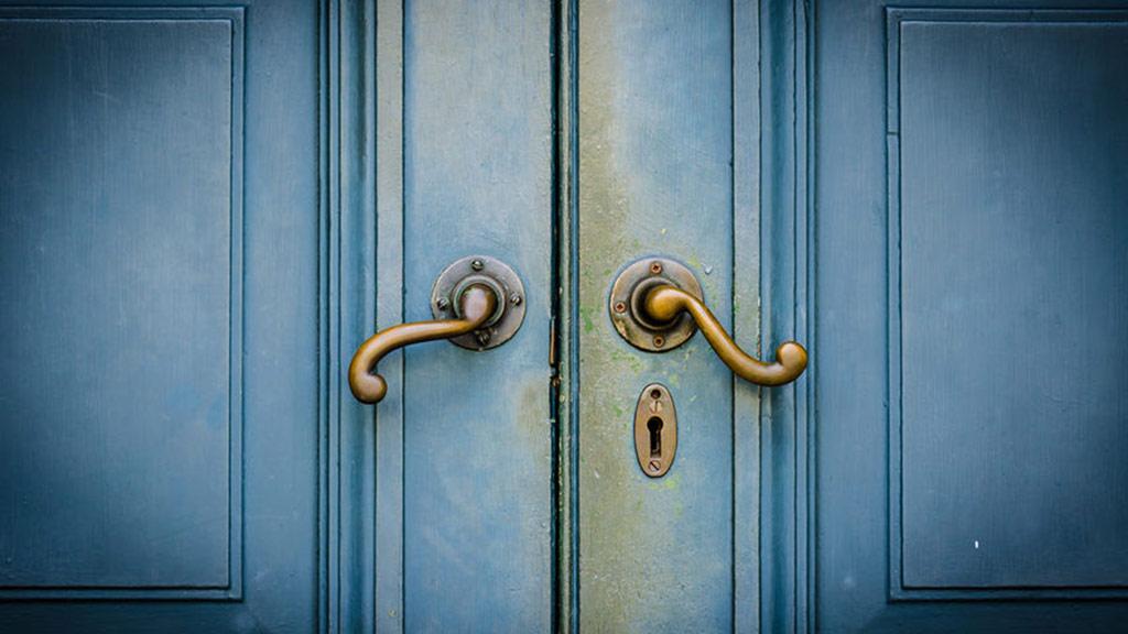 protege tus puertas de las termitas