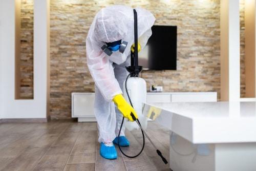 Beneficios de fumigar tu hogar