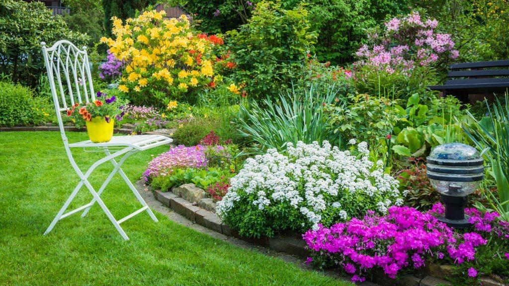 Sabes como lograr que el jardin de tu hogar luzca increible