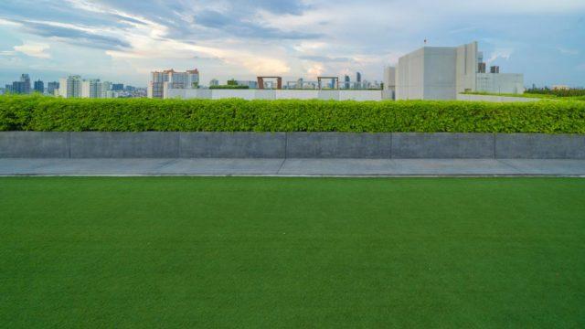 Como instalar un techo verde en tu hogar o proyecto de construccion 1
