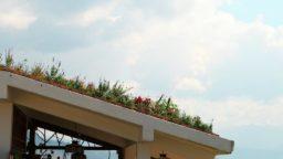 Como instalar un techo verde en tu hogar o proyecto de construccion