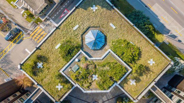 Como instalar un techo verde en tu hogar o proyecto de construccion 3