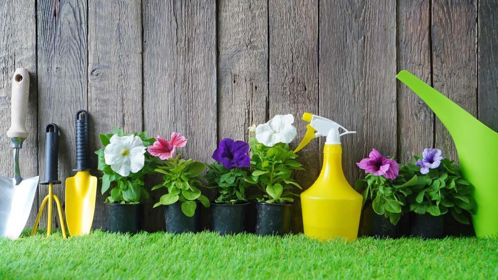 Cuales son las herramientas basicas para el cuidado de tu jardin