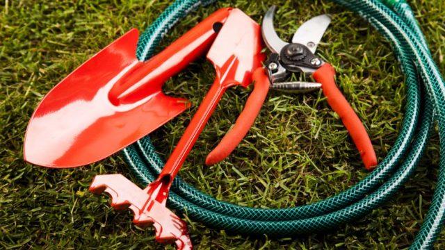 Cuales son las herramientas basicas para el cuidado de tu jardin1